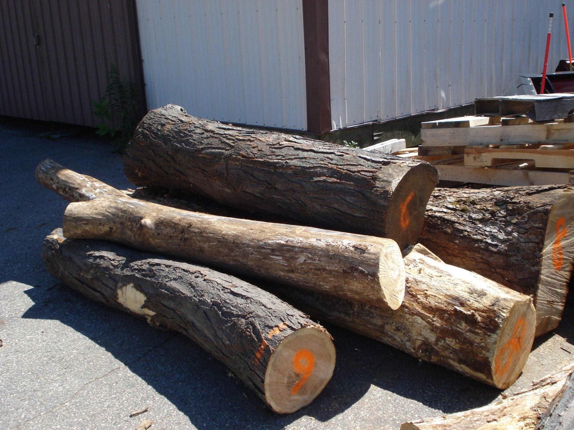 Balance logs for preschoolers