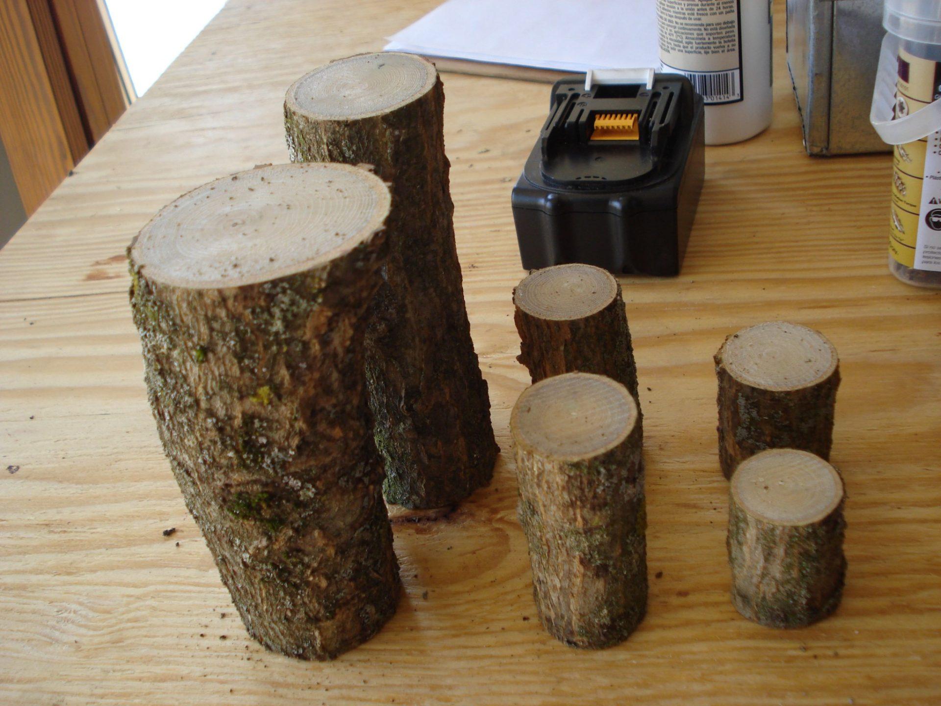 Branch blocks for preschoolers
